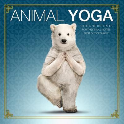 Animal Yoga Cover Image