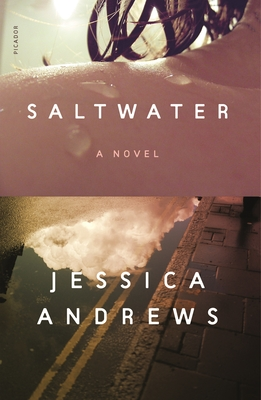 Saltwater: A Novel Cover Image