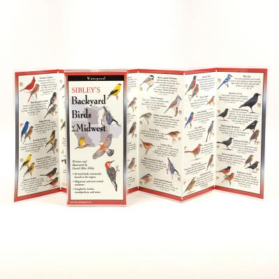 Sibley's Backyard Birds of the Midwest Cover Image