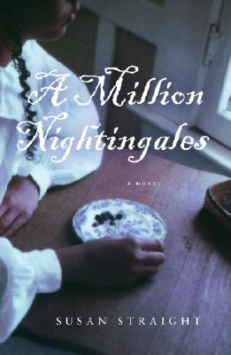 A Million Nightingales Cover