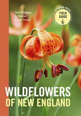 Wildflowers of New England (A Timber Press Field Guide) Cover Image