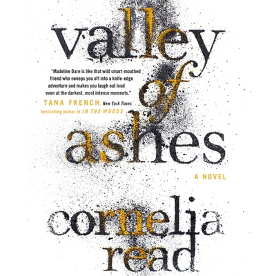 Valley of Ashes Cover