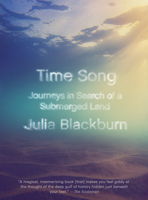 Time Song: Journeys in Search of a Submerged Land Cover Image
