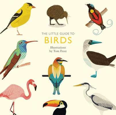 Little Guide to Birds (Bargain Edition)