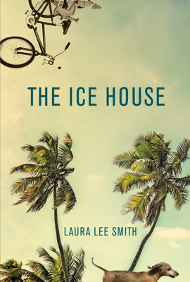 Cover Image for The Ice House