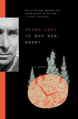 If Not Now, When?: A Novel Cover Image