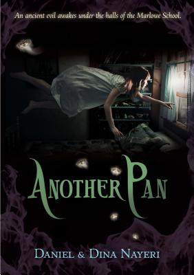 Another Pan Cover