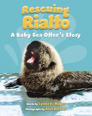 Rescuing Rialto: A Baby Sea Otter's Story Cover Image