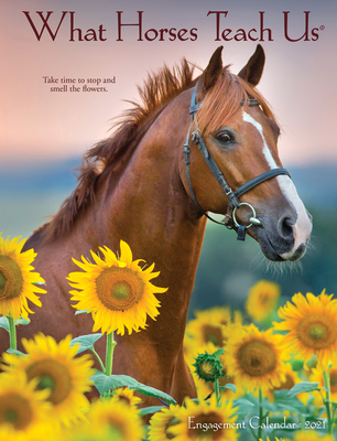 What Horses Teach Us 2021 Engagement Calendar Cover Image