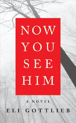 Now You See Him Cover