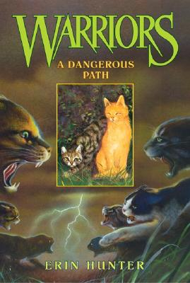 A Dangerous Path Cover