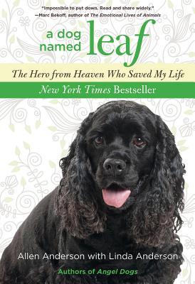 A Dog Named Leaf Cover