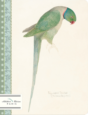 Perruche-Parakeet: Watercolor of Ring Necked Parakeet Circa 1835 by Edward Lear (1812-1888) Cover Image