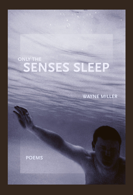 Cover for Only the Senses Sleep