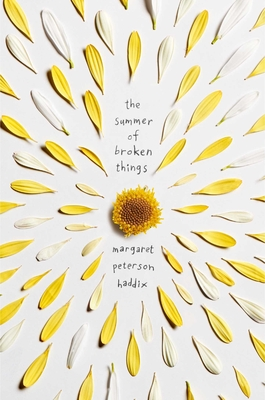 The Summer of Broken Things Cover Image
