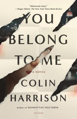 You Belong to Me: A Novel Cover Image