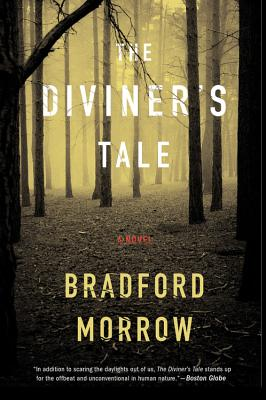 Cover for The Diviner's Tale