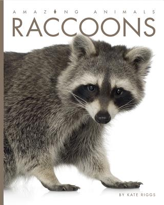 Amazing Animals: Raccoons Cover Image