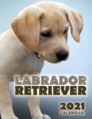 Labrador Retriever 2021 Calendar Cover Image