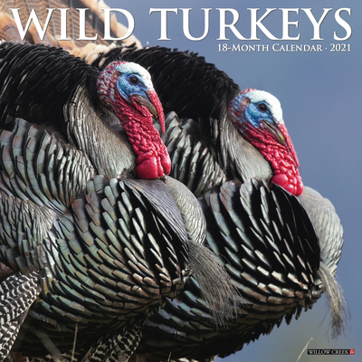 Wild Turkeys 2021 Wall Calendar Cover Image