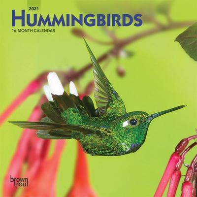 Hummingbirds 2021 Mini 7x7 Cover Image