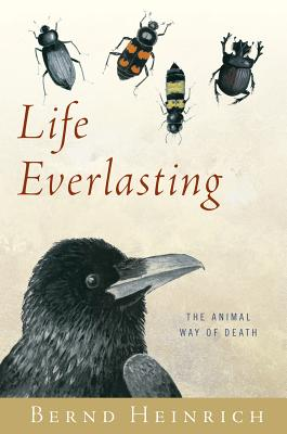 Life Everlasting Cover