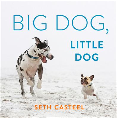 Big Dog, Little Dog Cover Image