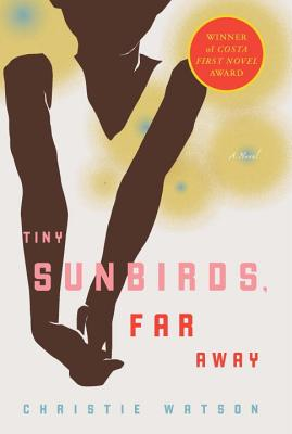 Tiny Sunbirds, Far Away: A Novel Cover Image