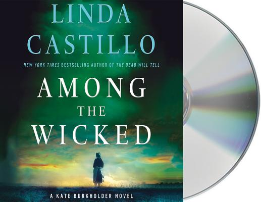 Among the Wicked: A Kate Burkholder Novel Cover Image