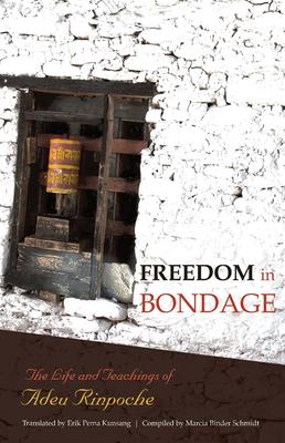 Freedom in Bondage Cover
