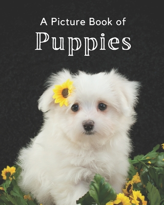 A Picture Book of Puppies: A Beautiful Picture Book for Seniors With Alzheimer's or Dementia. A Wonderful Gift for Dog Lovers. Cover Image