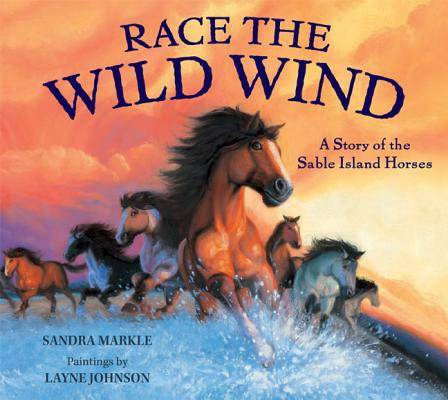 Race the Wild Wind Cover