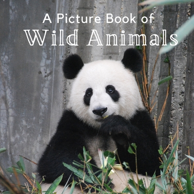 A Picture Book of Wild Animals: A Beautiful Picture Book for Seniors With Alzheimer's or Dementia. A Great Gift for Elderly Parents and Grandparents! Cover Image