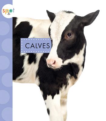 Calves (Spot Baby Farm Animals) Cover Image