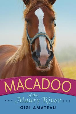 Macadoo Cover