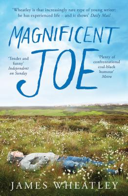 Magnificent Joe Cover