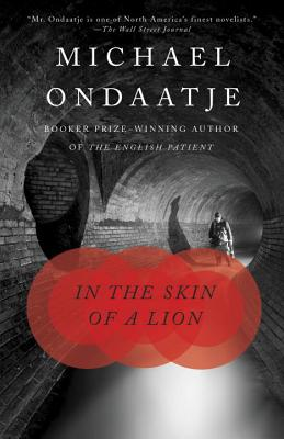 In the Skin of a Lion Cover