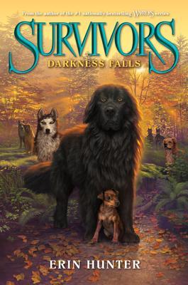 Survivors #3: Darkness Falls Cover Image