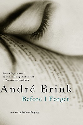 Before I Forget Cover