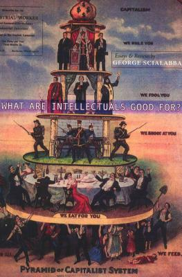 What Are Intellectuals Good For? Cover