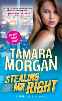 Stealing Mr. Right Cover