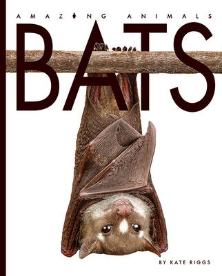 Bats (Amazing Animals) Cover Image