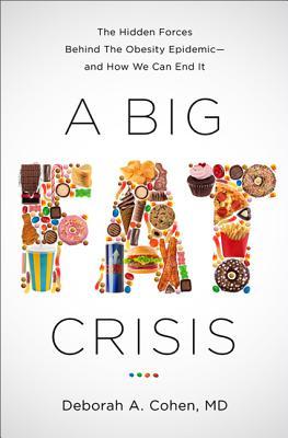 A Big Fat Crisis Cover