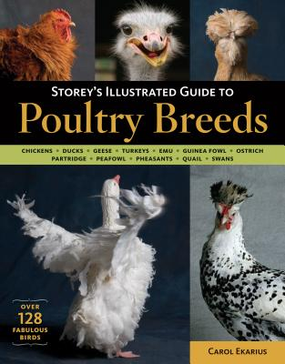 Storey's Illustrated Guide to Poultry Breeds: Chickens, Ducks, Geese, Turkeys, Emus, Guinea Fowl, Ostriches, Partridges, Peafowl, Pheasants, Quails, Swans Cover Image