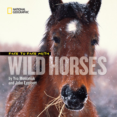 Face to Face with Wild Horses Cover