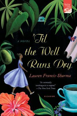 'Til the Well Runs Dry: A Novel Cover Image