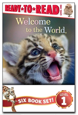 ZooBorns Ready-to-Read Value Pack: Welcome to the World, ZooBorns!; I Love You, ZooBorns!; Hello, Mommy ZooBorns!; Nighty Night, ZooBorns!; Splish, Splash, ZooBorns!; Snuggle Up, ZooBorns! Cover Image