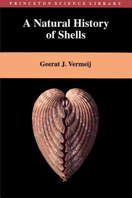 A Natural History of Shells (Princeton Science Library) Cover Image