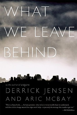 What We Leave Behind Cover