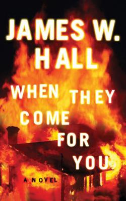 When They Come for You (Harper McDaniel #1) Cover Image